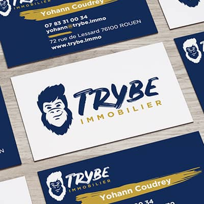 Trybe Immobilier